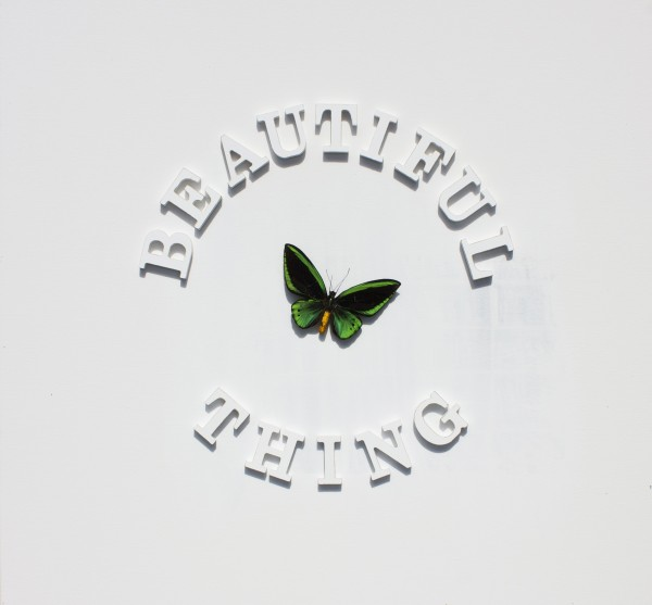 THE STONE ROSES - BEAUTIFUL THING