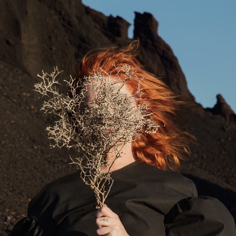 Goldfrapp - Silver Eye Packshot